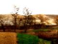 johann moser - timebased landscape 82-3