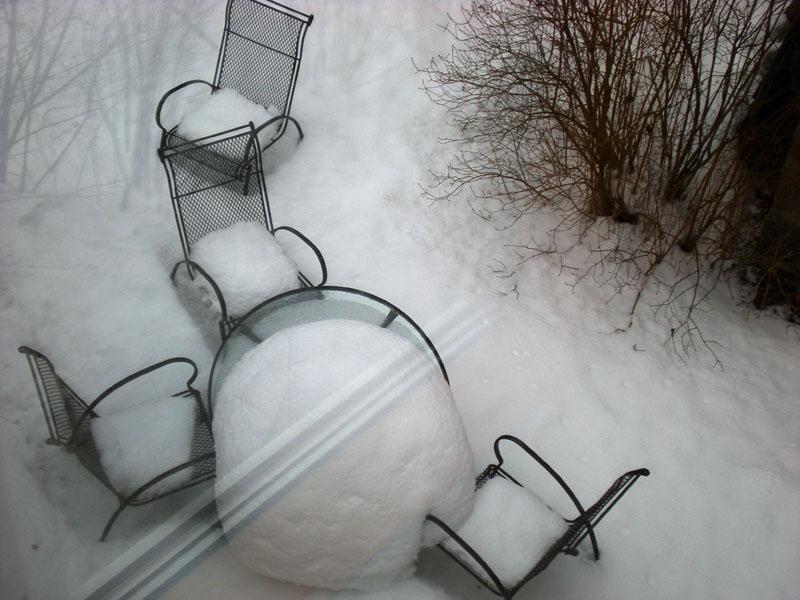 Stillleben im Wintergarten